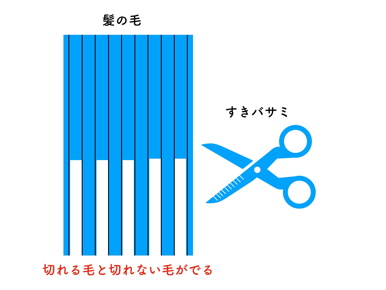 セニングの図解