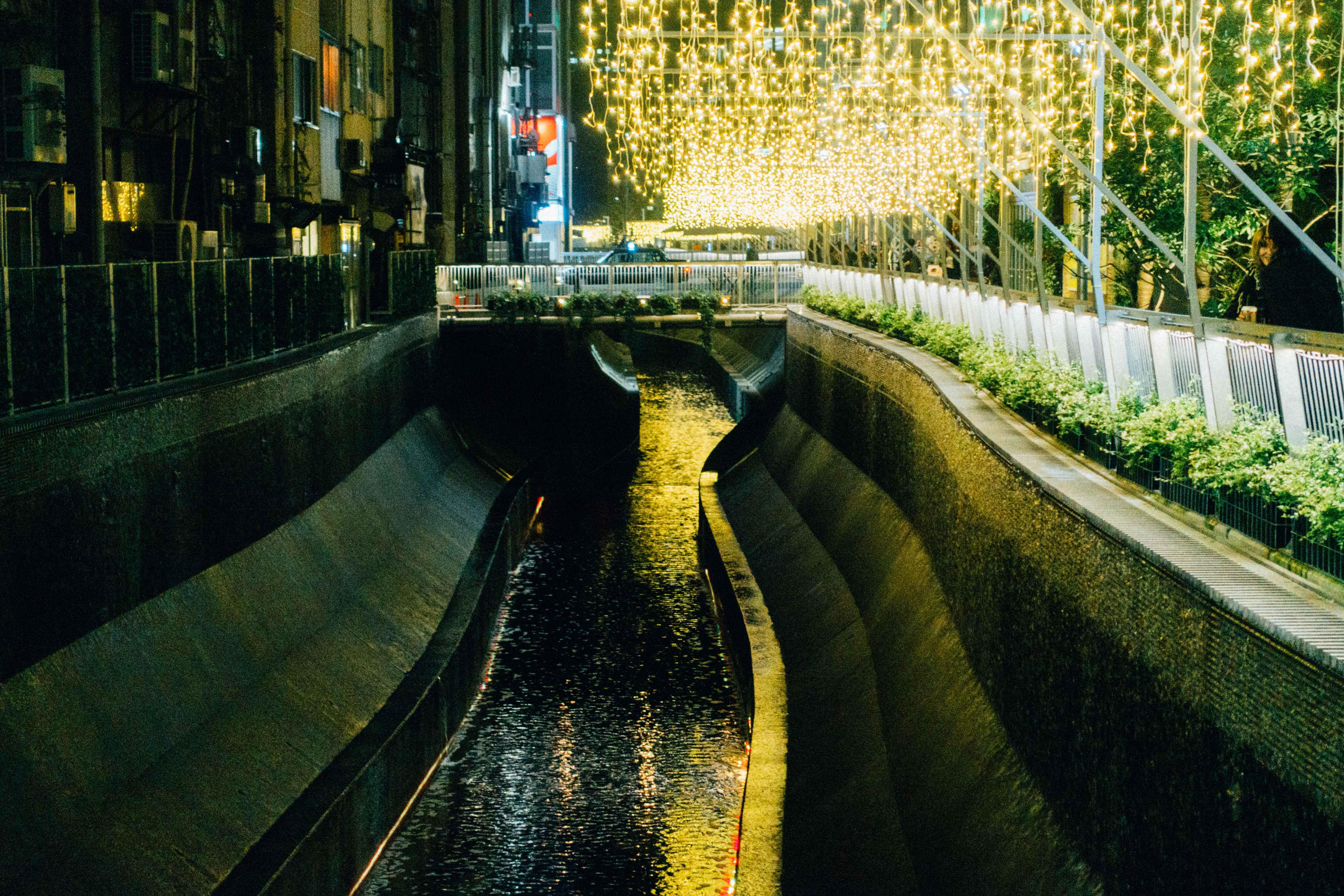 渋谷川イルミネーション