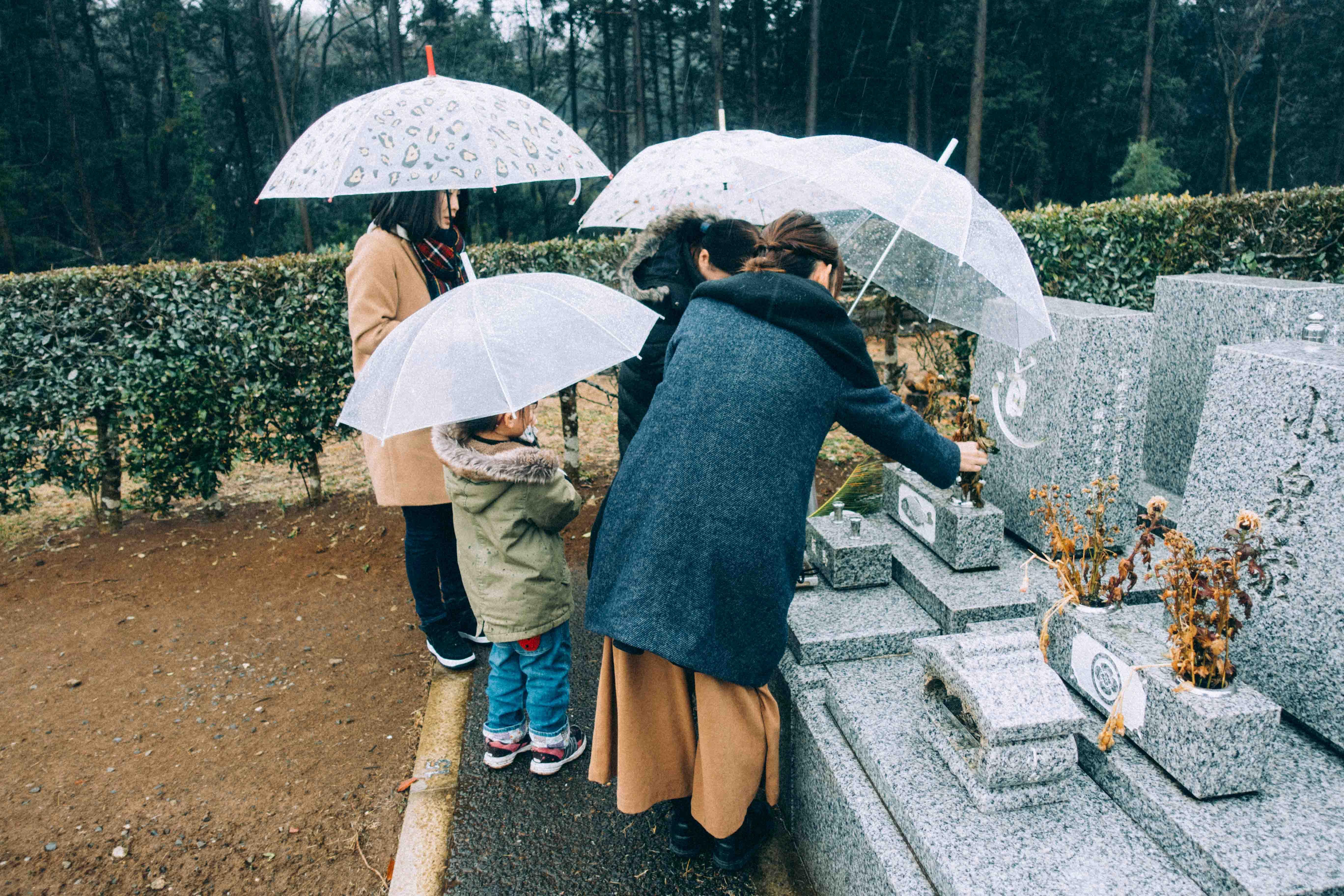 雨の中の墓参り